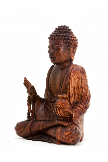 Medicine Buddha with Mala 8